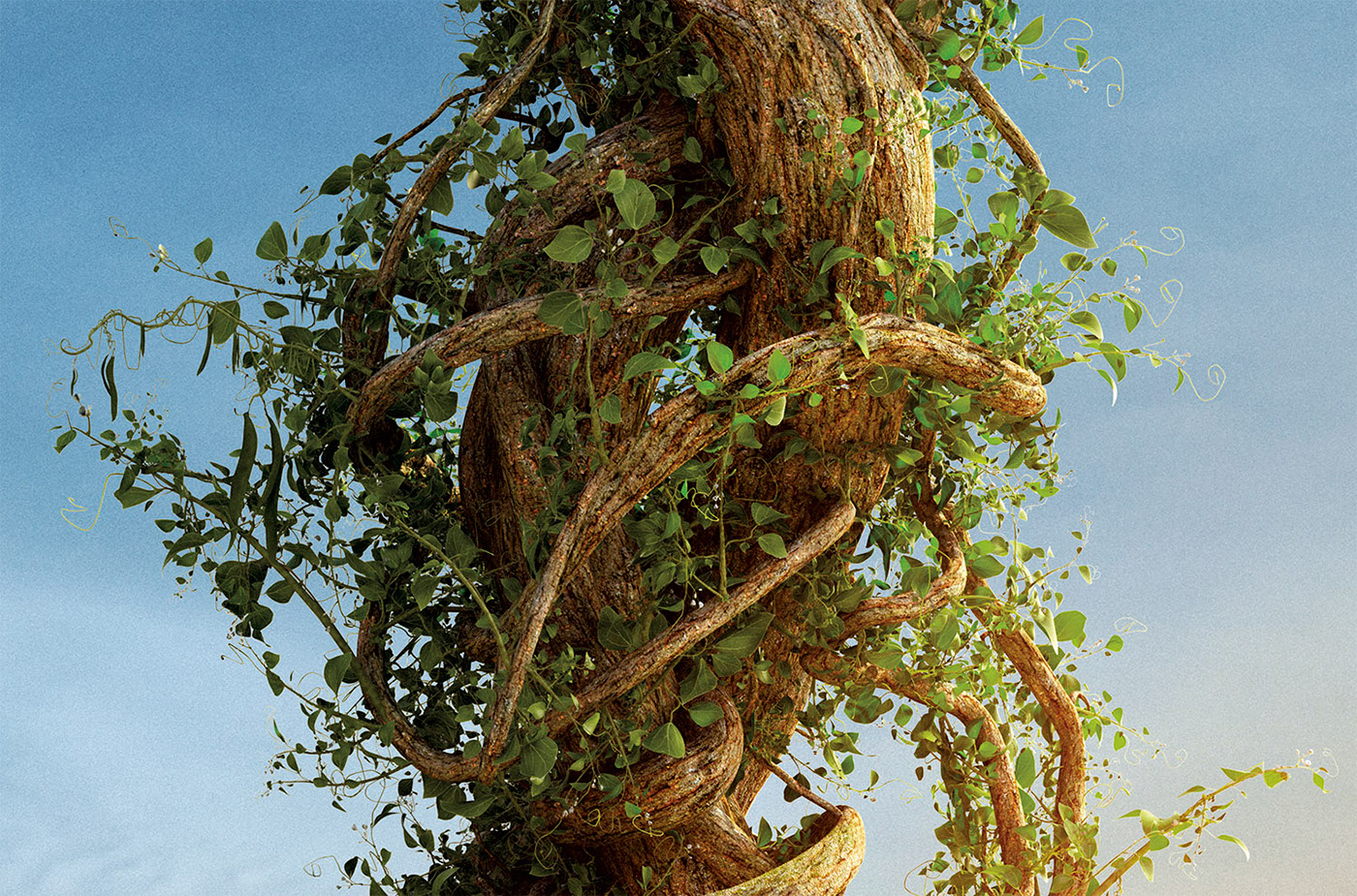 CGI vfx 3D Landscape plants Tree  sunset summer fantasy fairytale SKY foliage Nature natural sci-fi