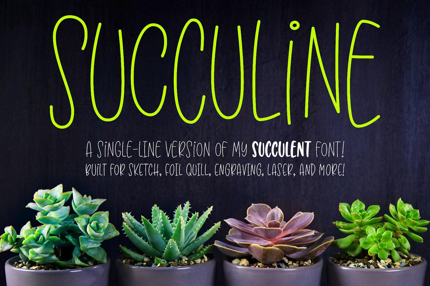 engraving font hairline laser single-line sketch Succulent succuline Typeface
