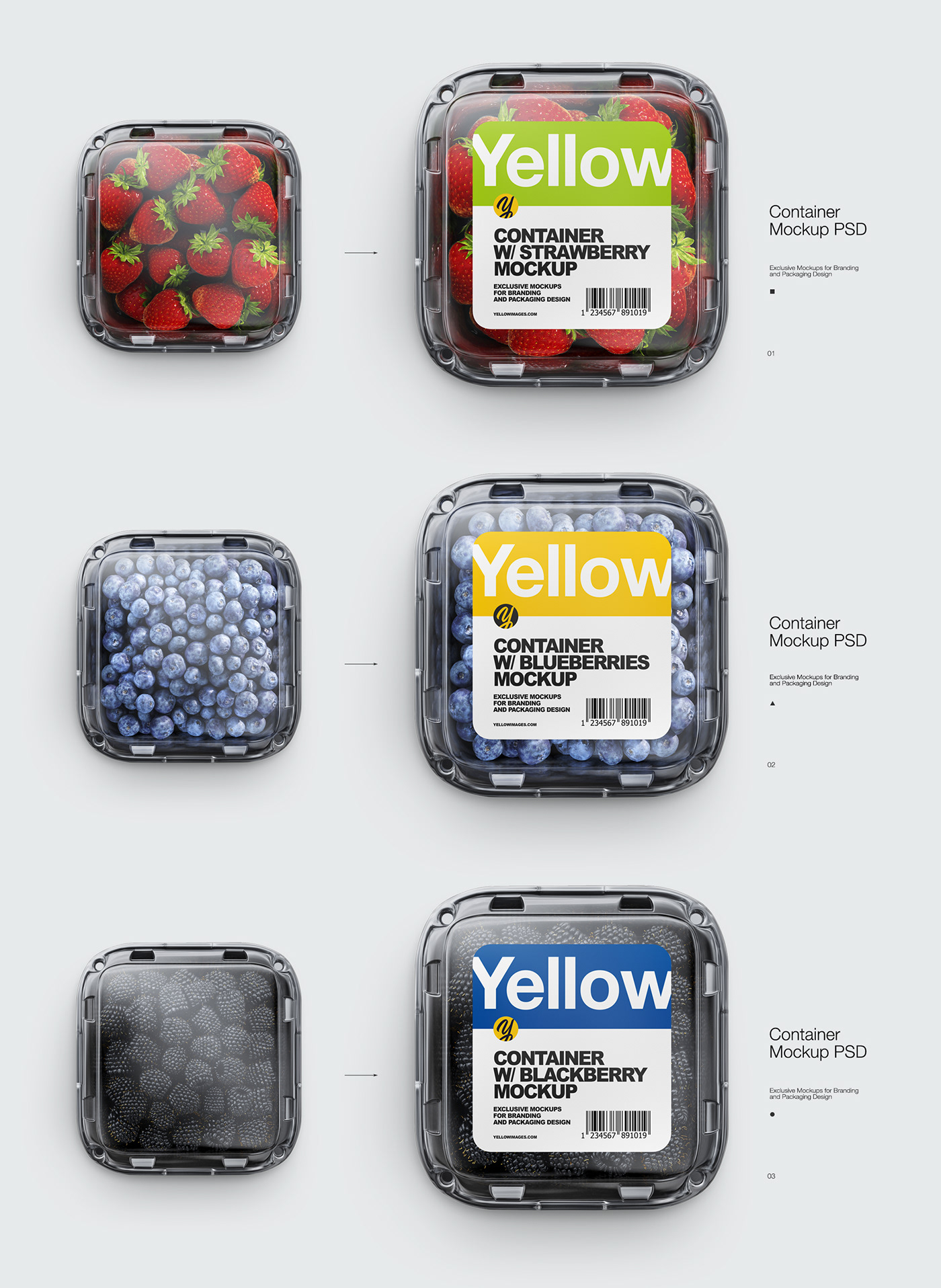 Download Containers Mockups Psd On Behance PSD Mockup Templates