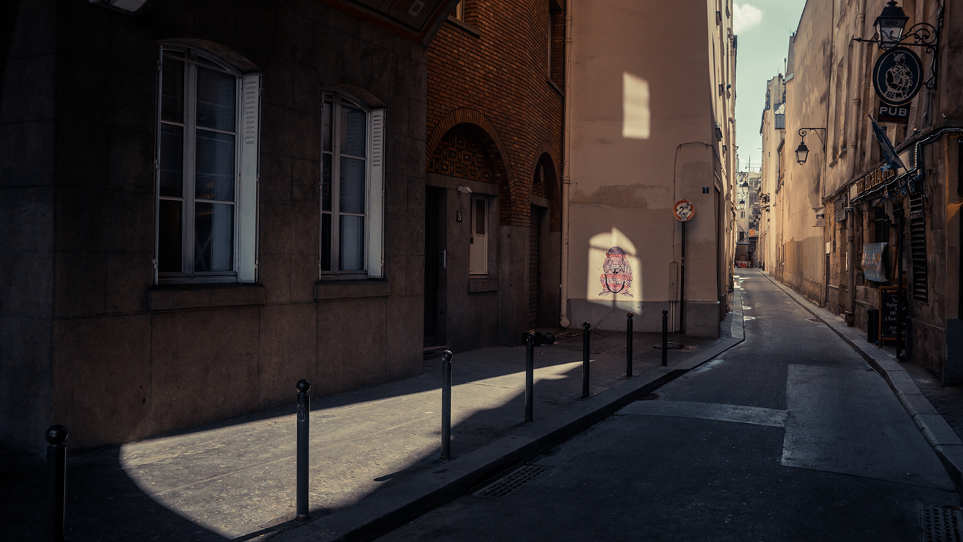 cinematic Paris france flares vintage city wanderlust sunlight Europe digital