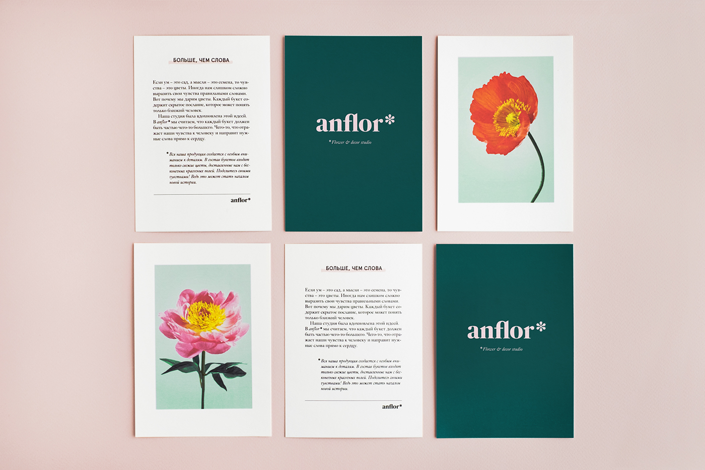 identity Flowers branding  pattern brush colors typography   pink Nature hand drawing