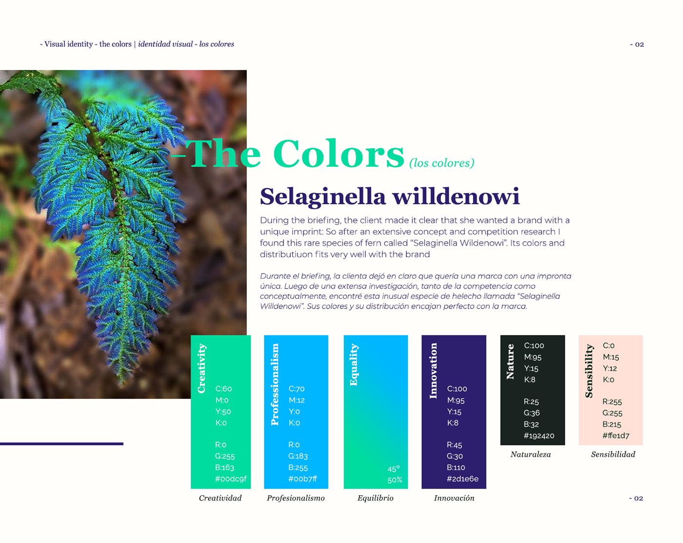 identity visual identity typography   digital design Web Design  branding