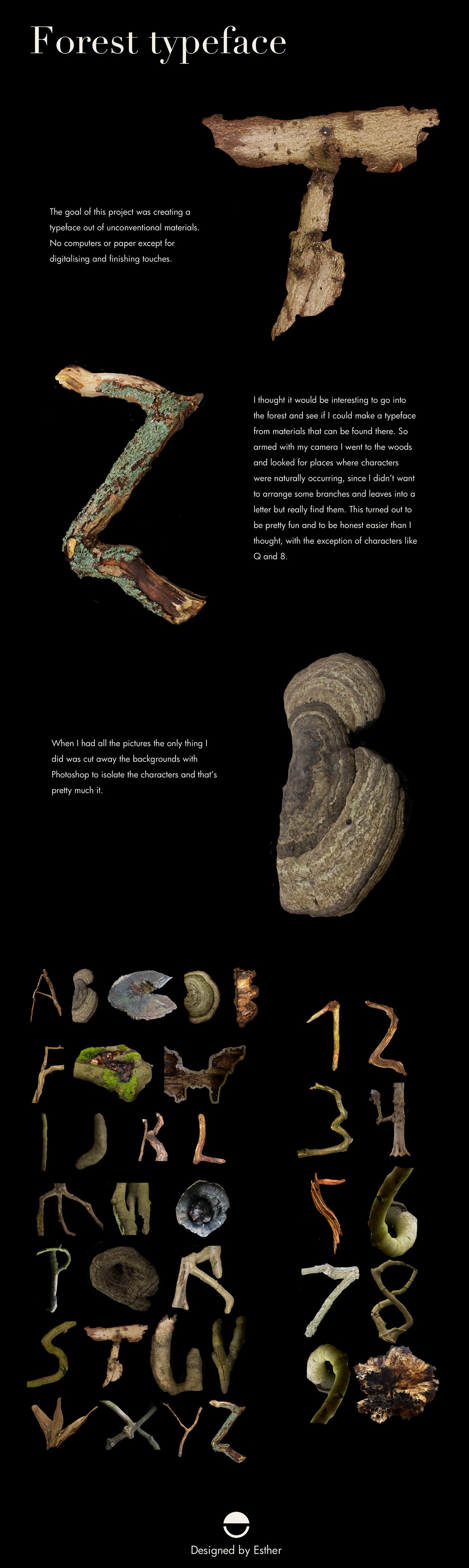 font art Nature wood alphabet letters numbers mushroom