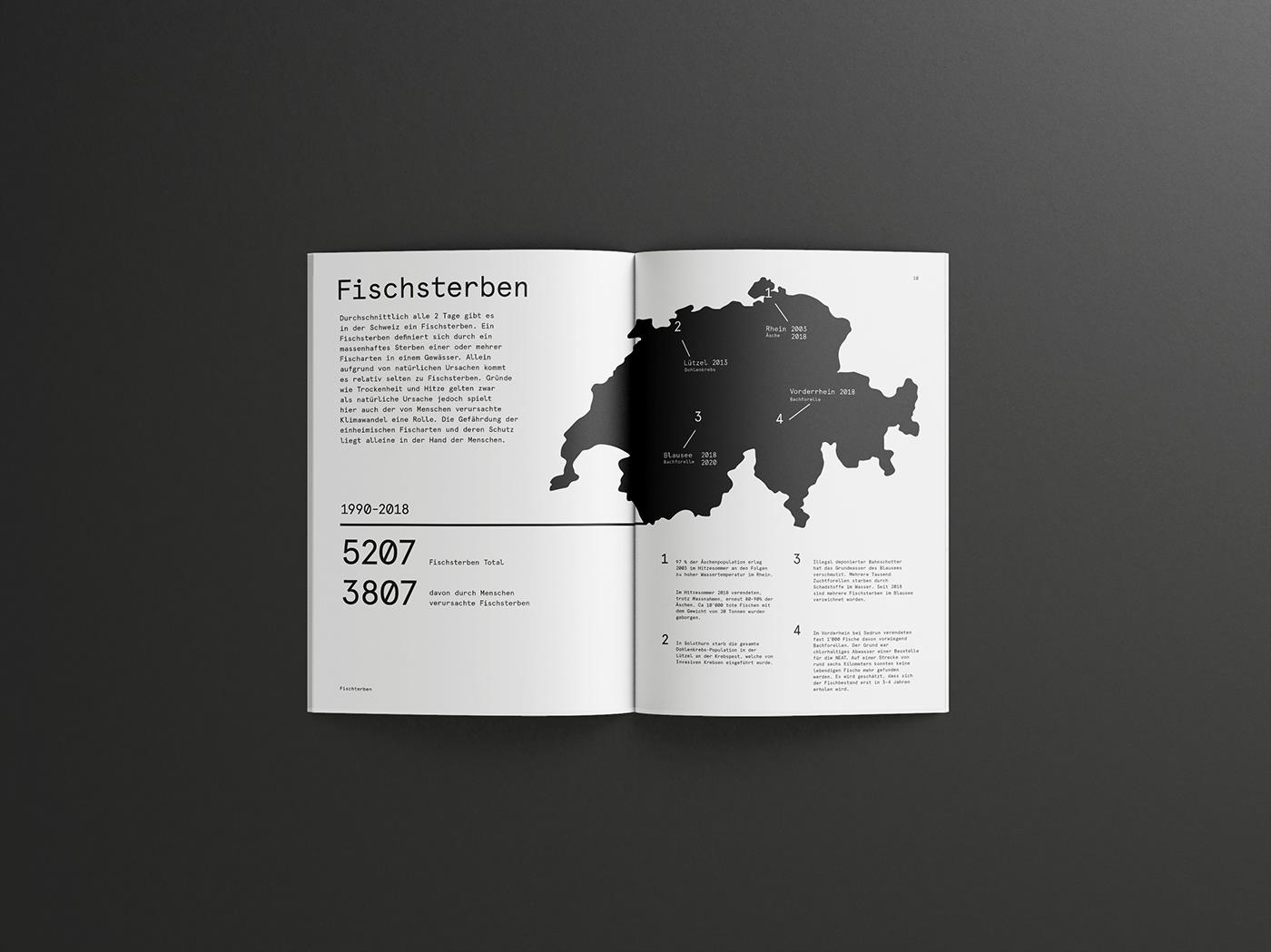 editorial fisch fish graphic design  ILLUSTRATION  infographic print Switzerland
