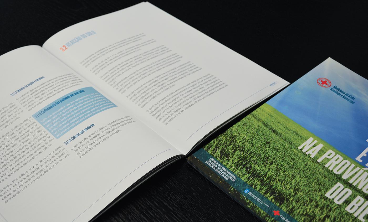 estudo brochura