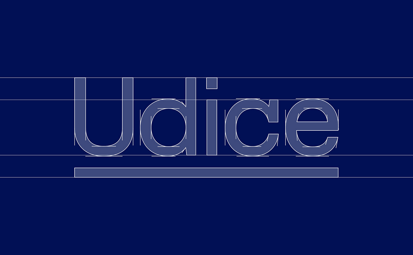 blue branding  logo naming research typography   University beige corporate Education