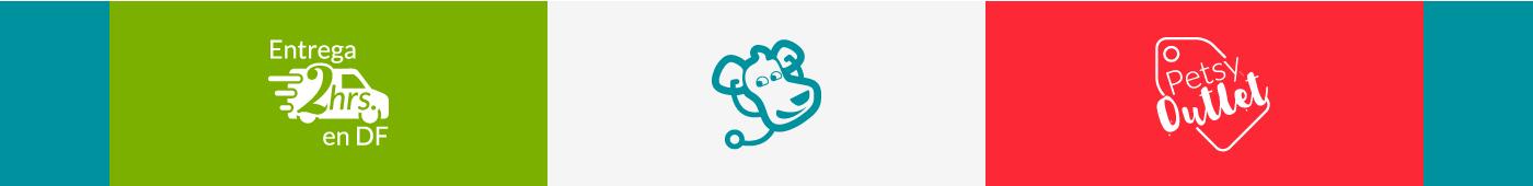 branding  Ecommerce Web Design  visual identity Corporate Identity ux UI Digital product design pets mexico