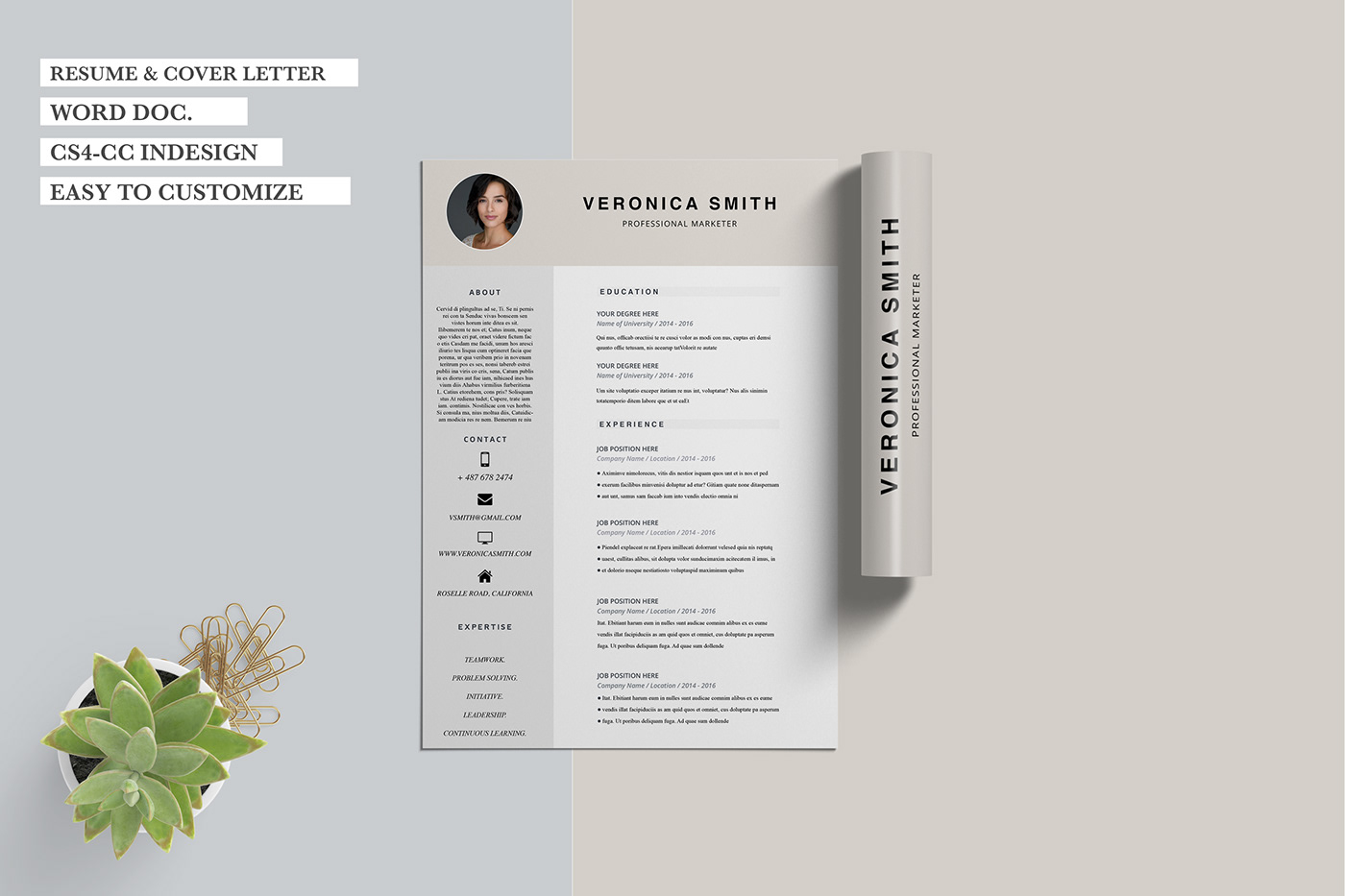 Resume CV resume template cover letter template Free Resume free clean resume feminine resume feminine resume example