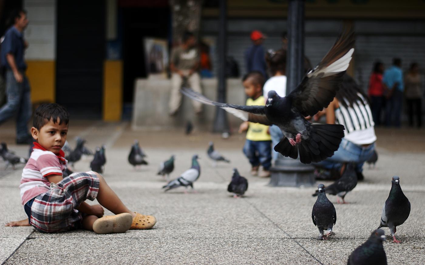 mérida,venezuela,Street,Nature,people,Flora,animals,Photography ,sports