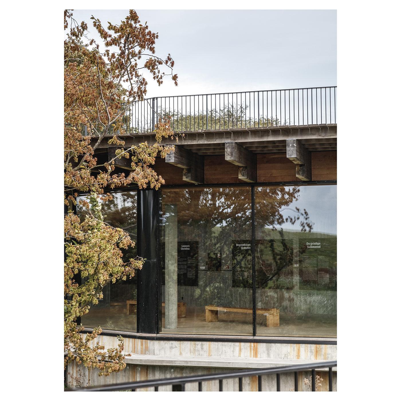 Image may contain: tree and bridge