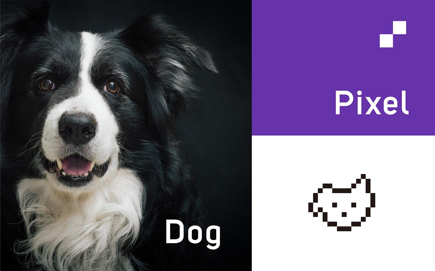 狗粮包装设计,,宠物店品牌设计,宠物用品包装设计,玩具包装设计,图形设计