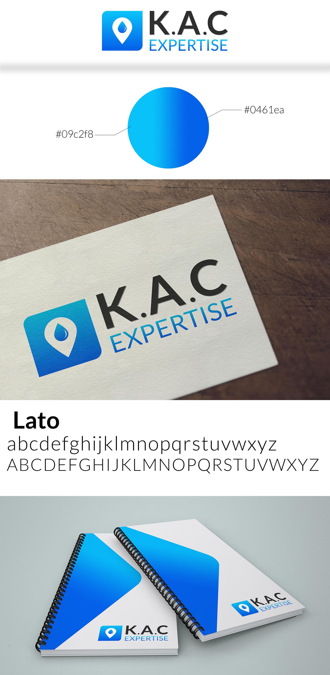 Logo Design graphic design  Illustrator brand identity branding