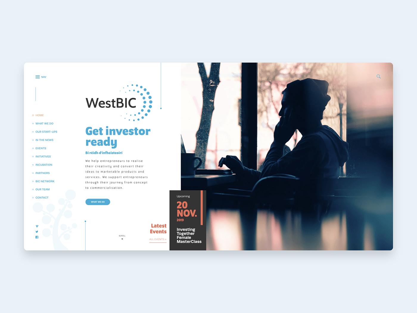 Web Design  web development  graphic design  branding  cms viewport design