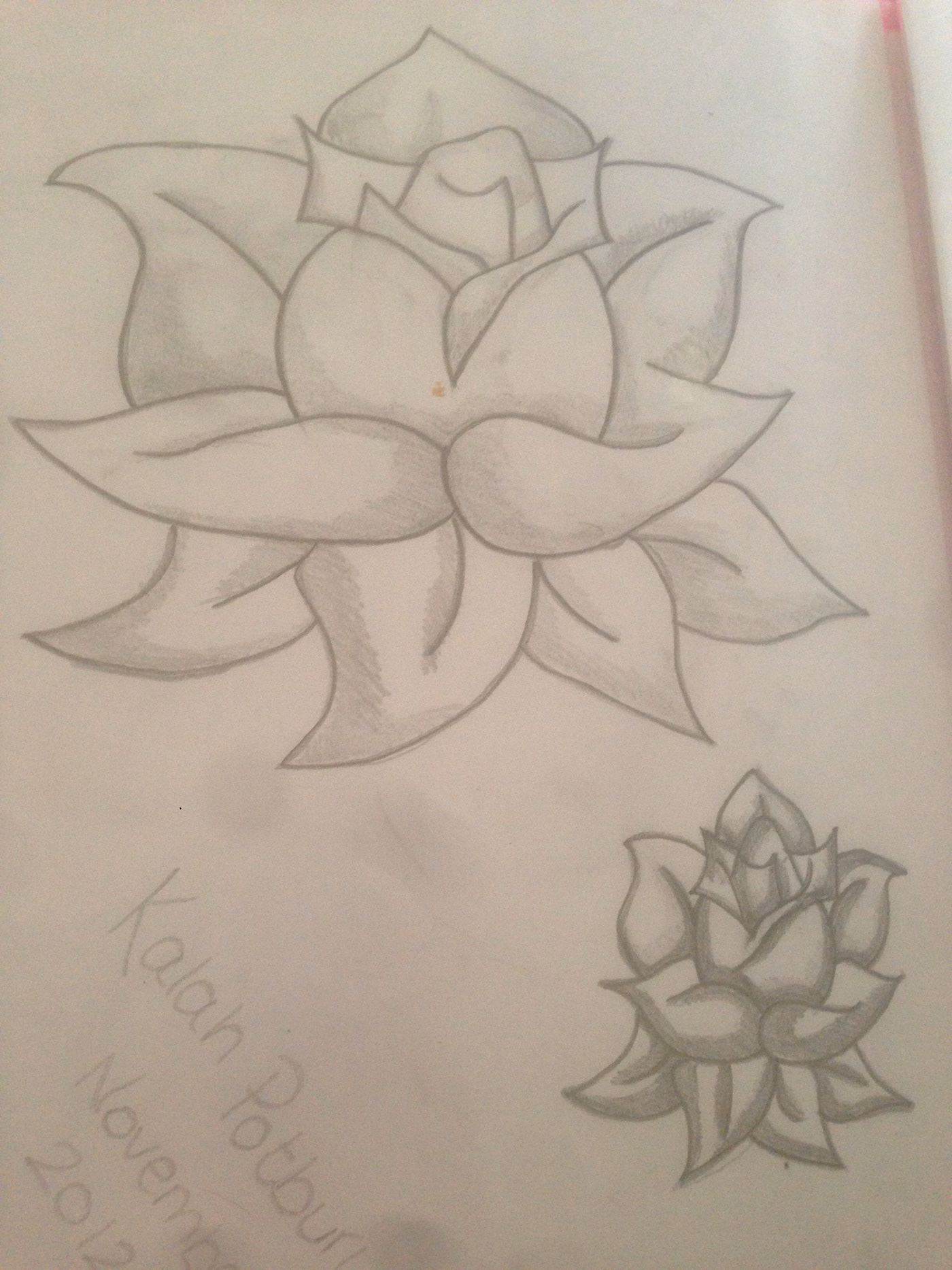 有設計感的19套玫瑰花水彩素描欣賞