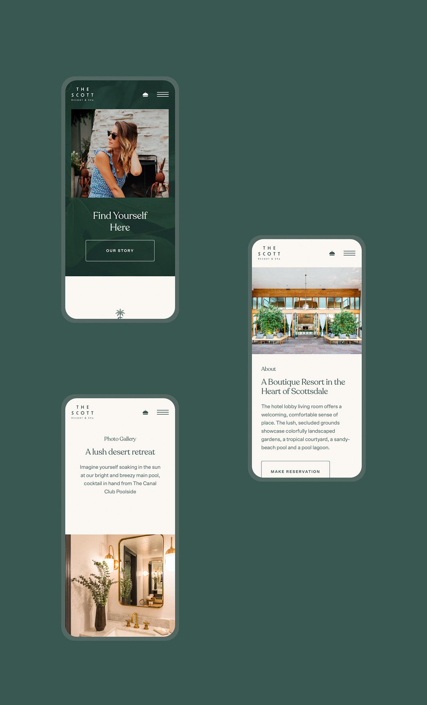 hotel Website design Web Design  ux UI interactive