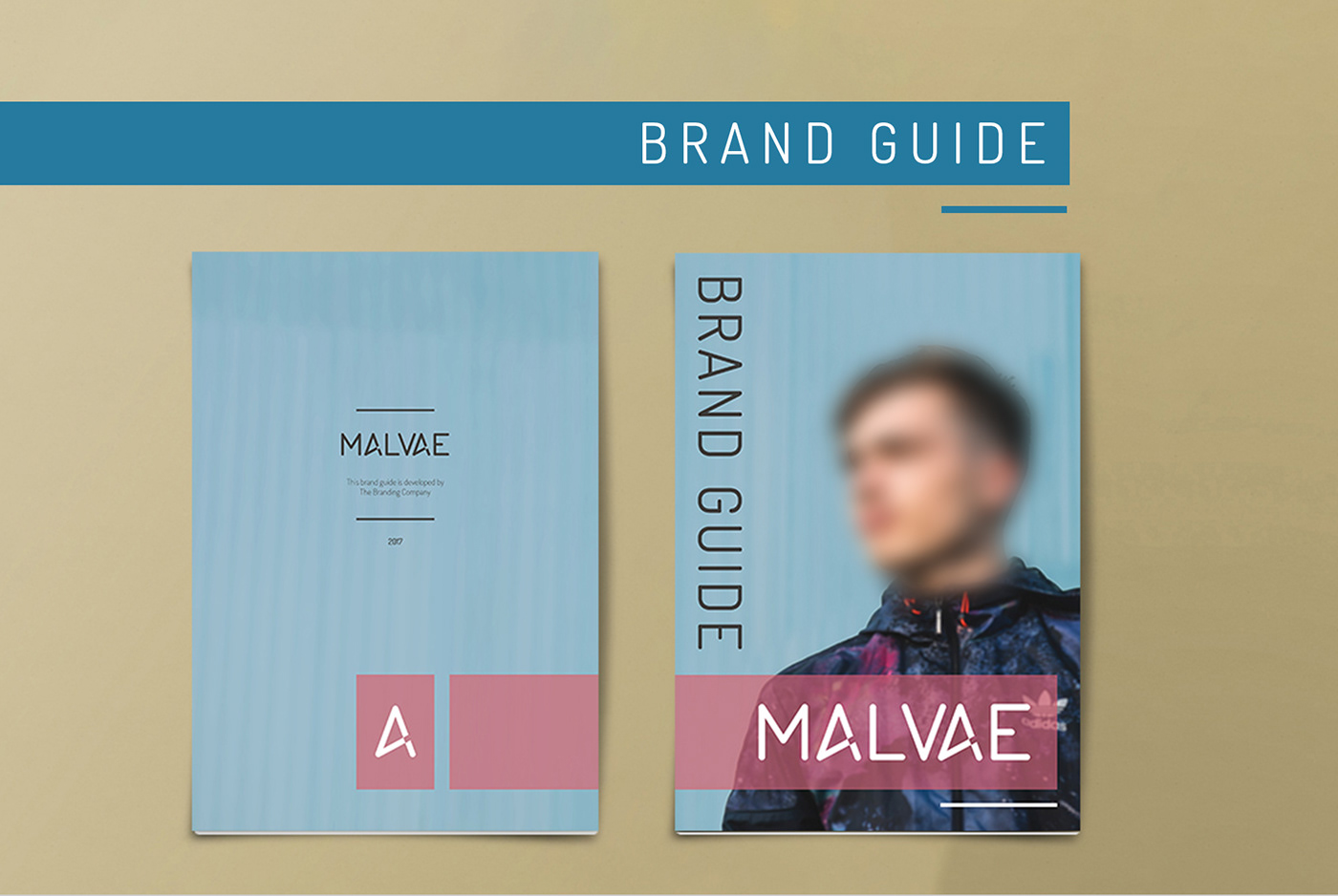 branding  Website brand guide buisiness card logo graphic design  web development  Web Design  Corporate Identity design