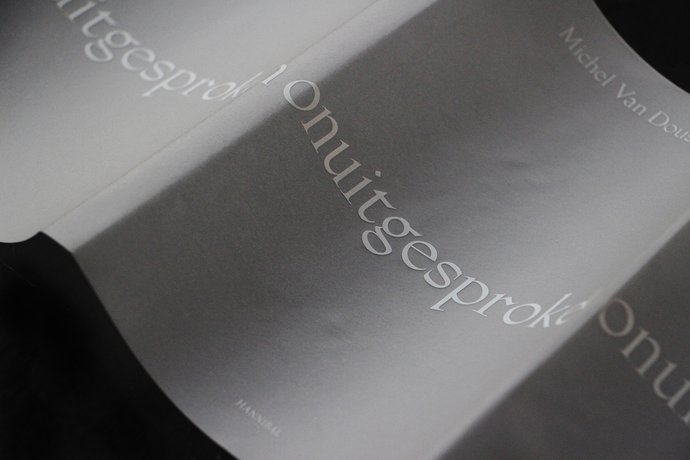 Michel Van Dousselaere,Theatre,book,Photography ,transparent,Transparency,black,actor,afasie