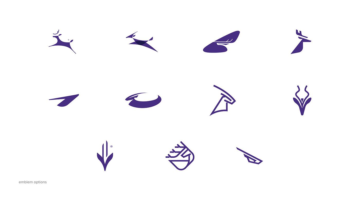 air Airlines airplane Airways brand branding  business Memory plane purple