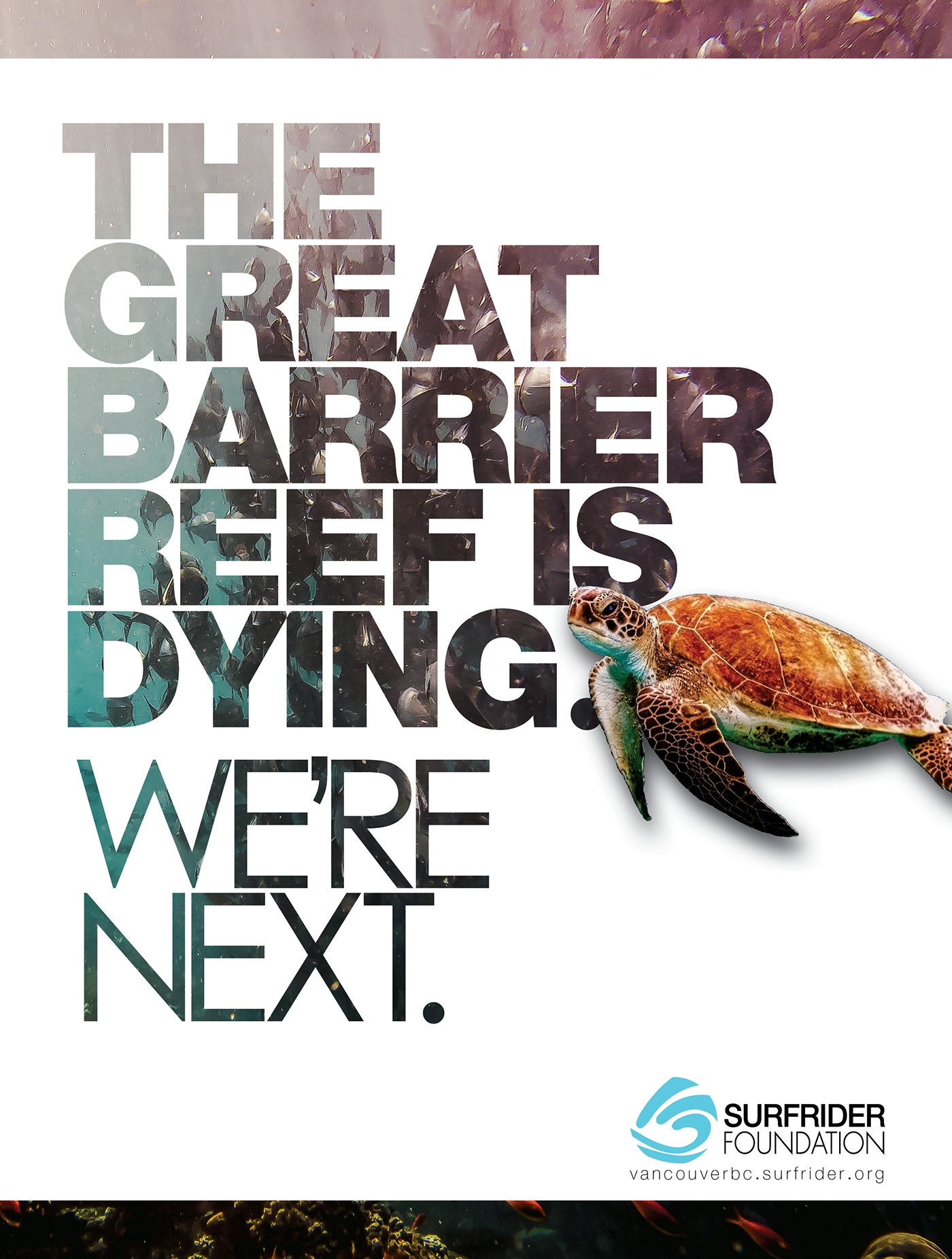 SurfRider Foundation Advertising  Ocean copywriting  Turtle