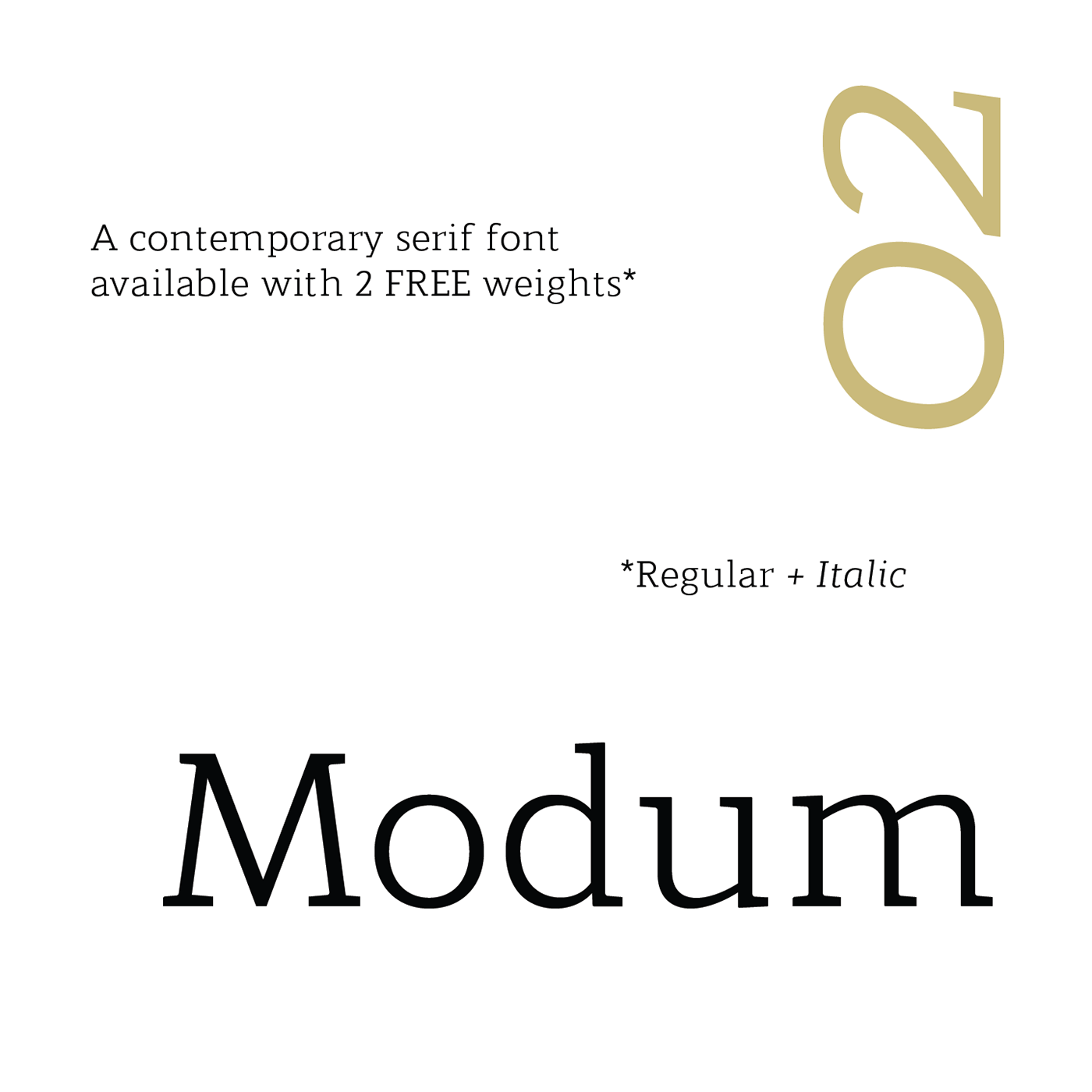 free serif Typeface Free font contemporary books newspapers The Northern Block Serif Font serif typeface