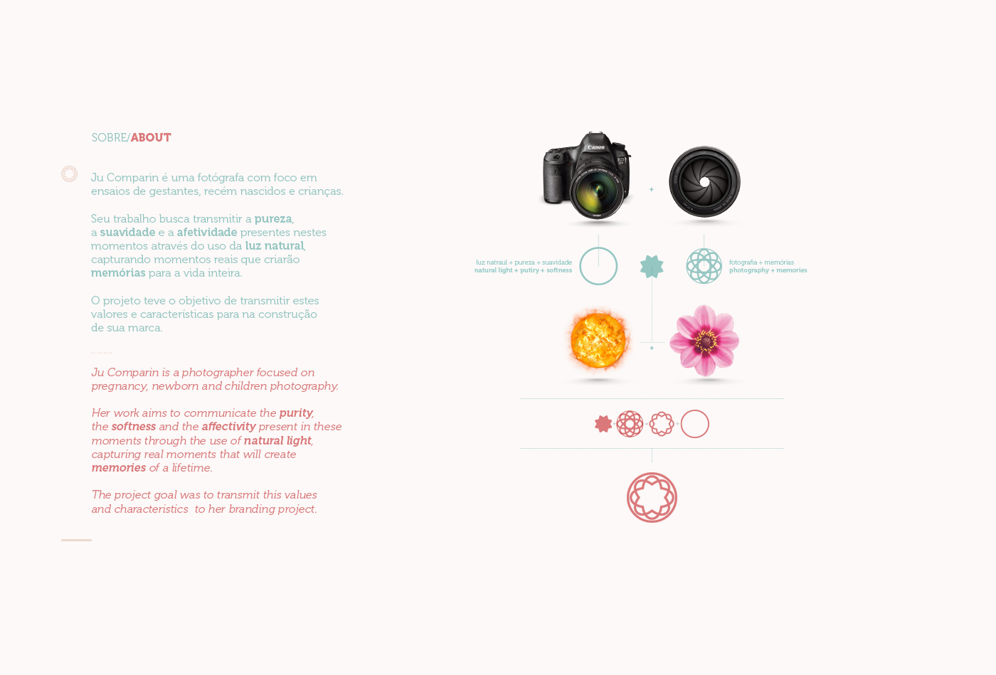 branding  design graphic design  Web Design  photography brand Protography