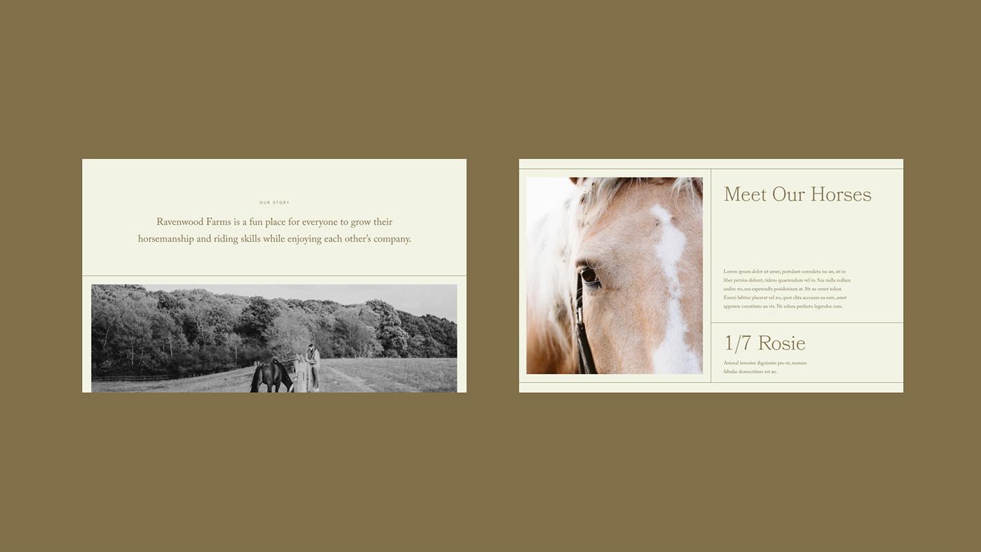 cowgirl farm farming feminine field Flowers horse horse riding Nature western