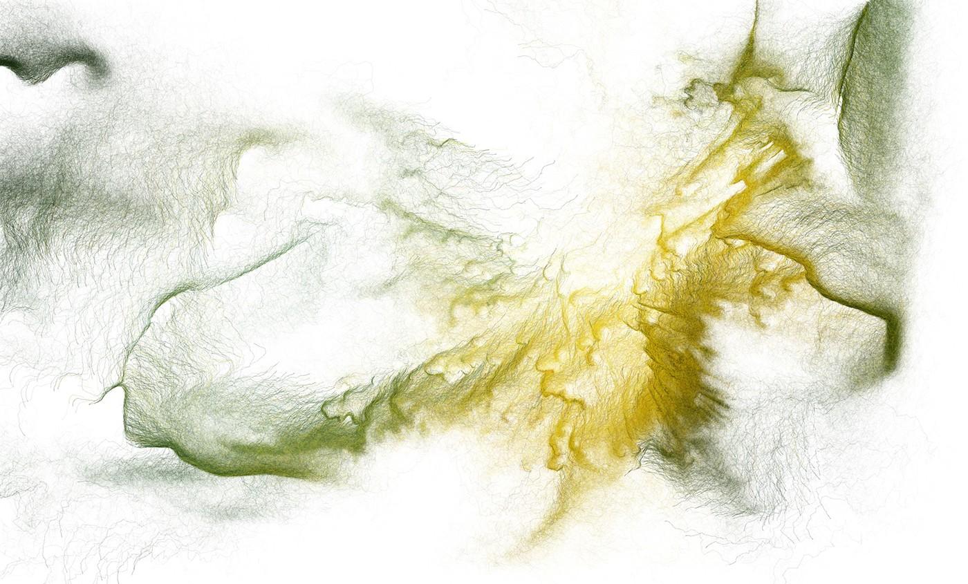 generative processing algorithmic flower