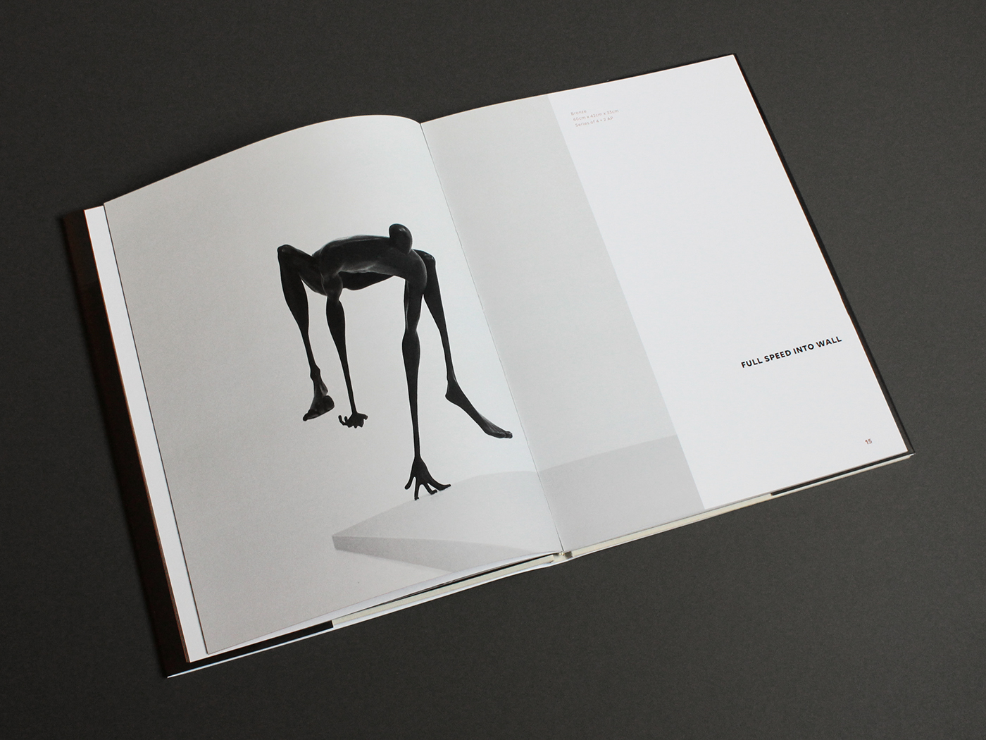 artist sculptor sculpture Layout book design editorial cover typography   type