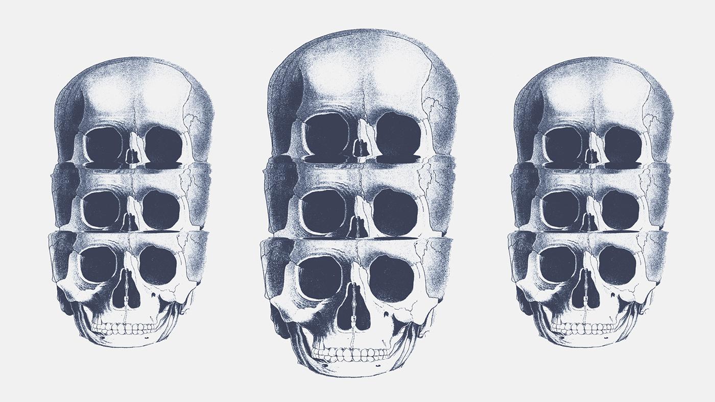 Glitch glitch art scanner skull skillshare image-making experimental distortion scanner glitch type treatment