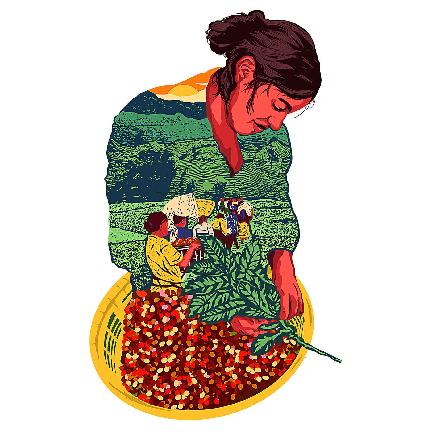 bandola magazine nicaragua coffe migrants centralamerica humanrights migrantes people