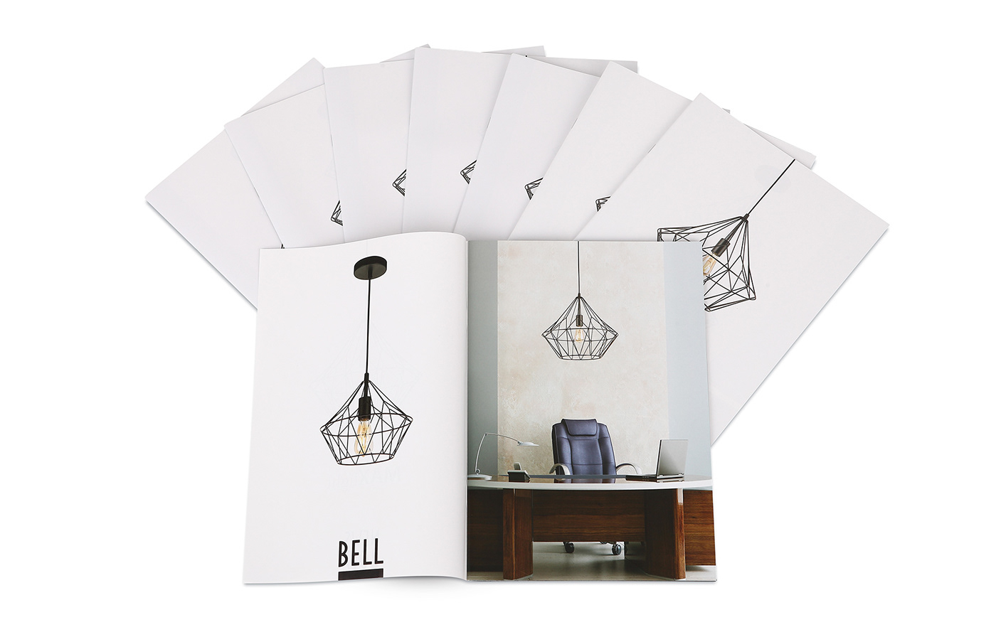 Advertising  brochure campaign