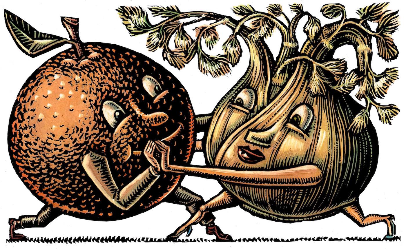 an orange dancing with a cute fennel