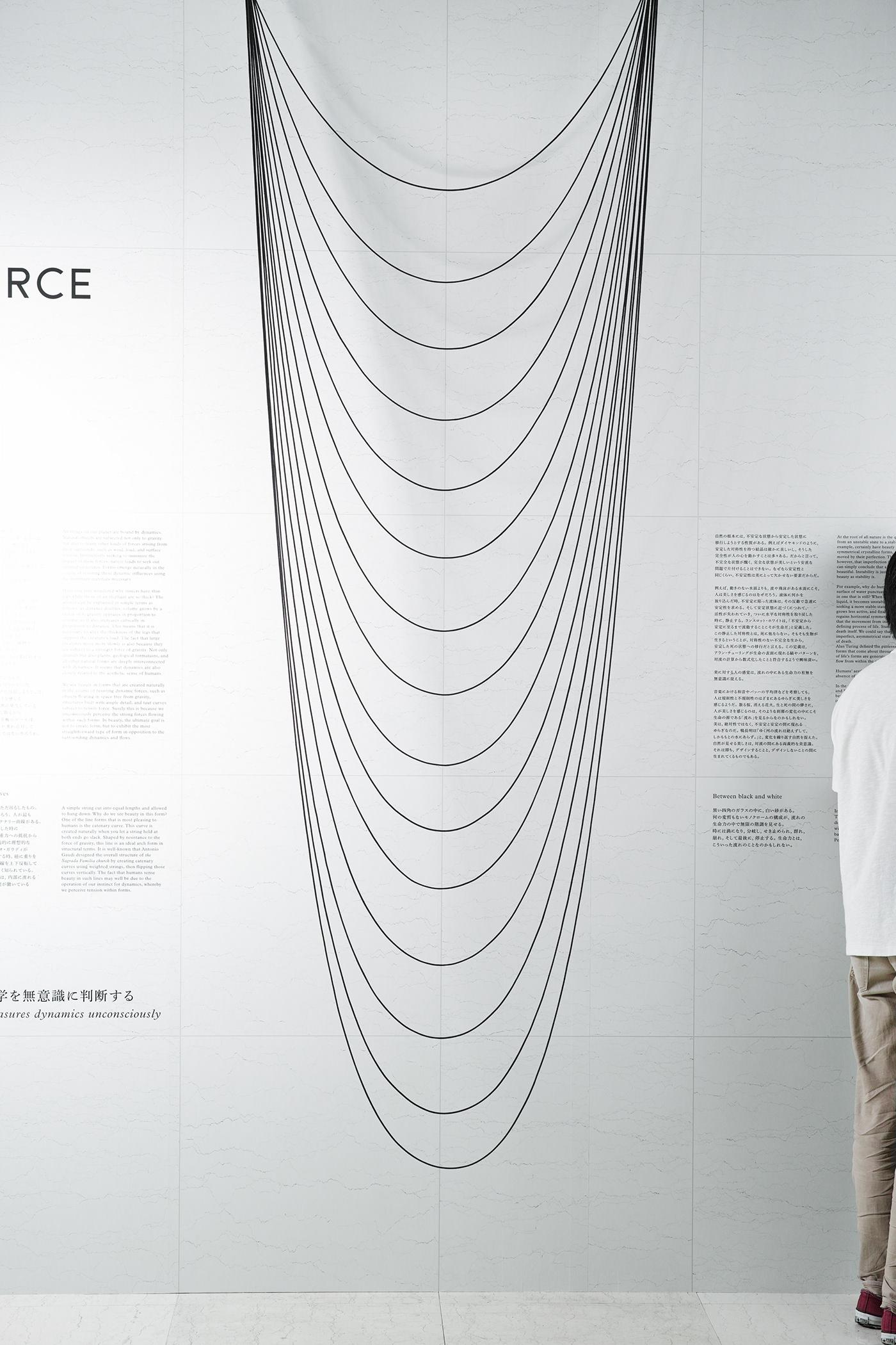 evolutionthinking knowledge designthinking Nature ecosystem innovation force beauty gravity Eisuke Tachikawa