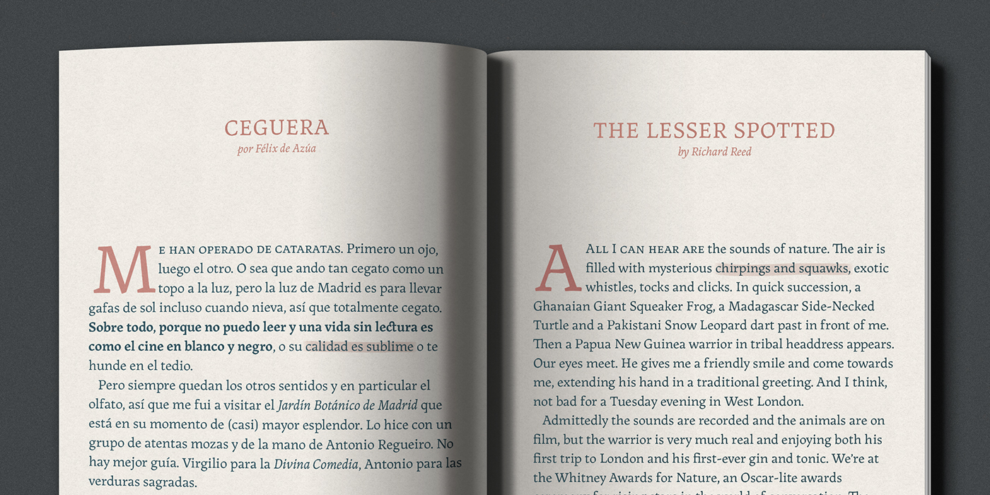 typography   font sudtipos serif editorial typedesign
