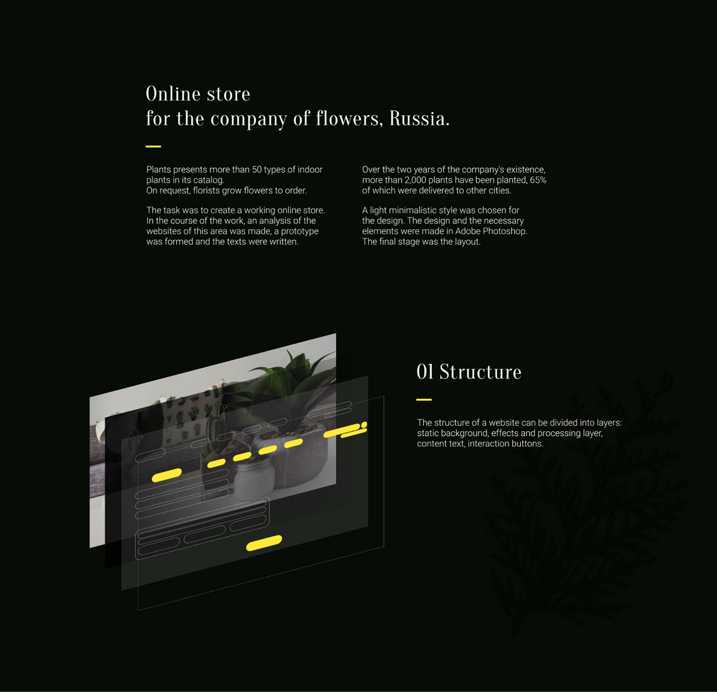 e-comerce Flowers plants product design  shop UI ux Website онлайн магазин сайт