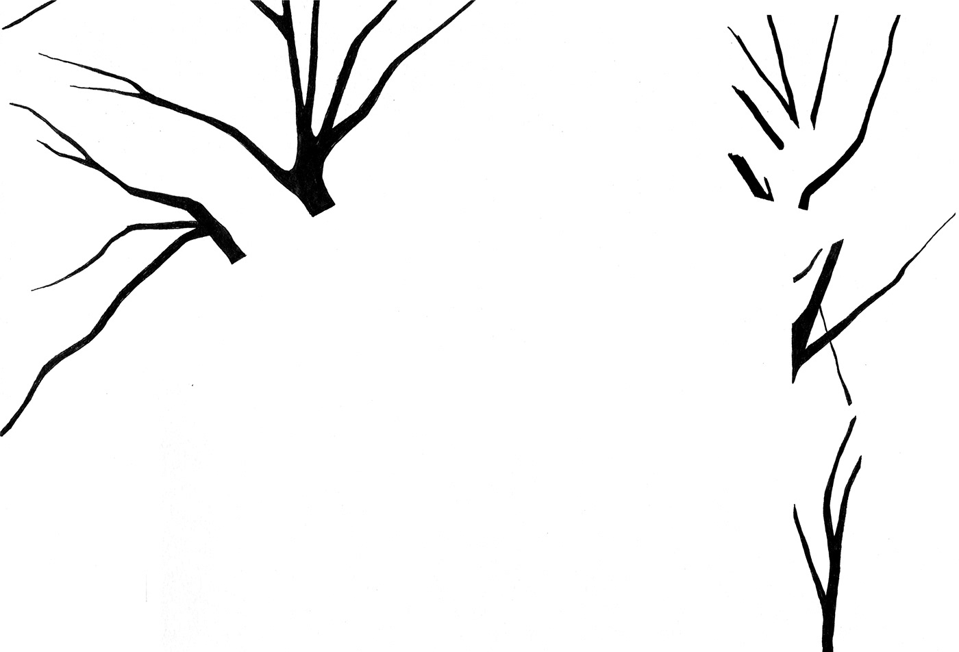 Tree  trees black White negative space pen ink black and white Nature Environmentalist