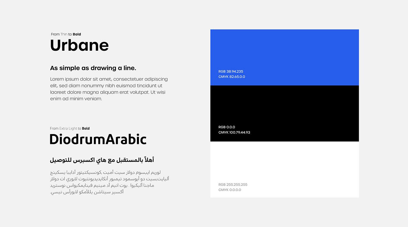 Typeface & Color palette