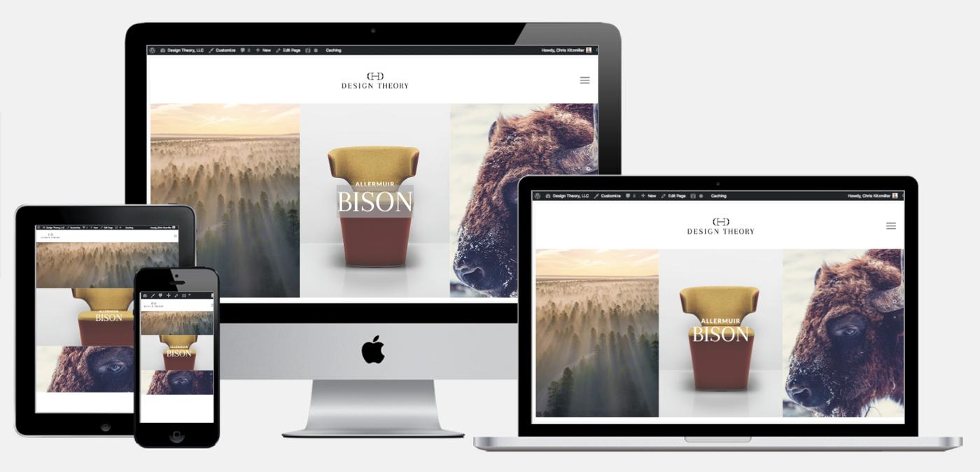 logo branding  Website wordpress prototype ux UI