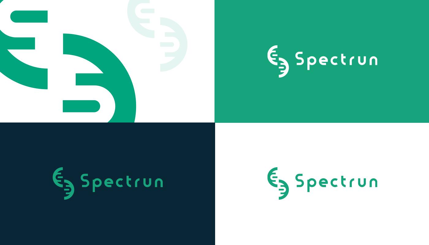 branding  design identidade visual Logotipo posicionamento Website