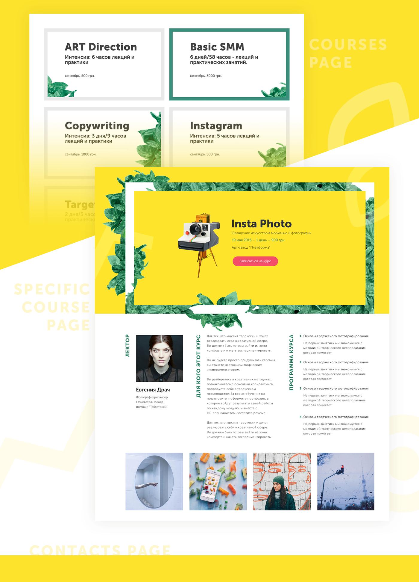 Basil SMM kiev web-design green ukraine bright