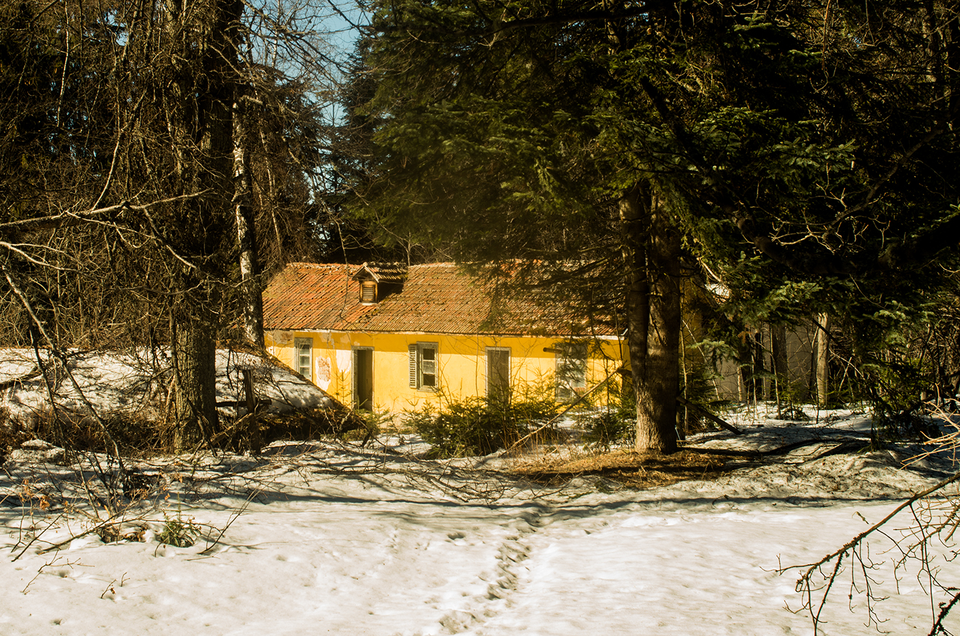 The Yellow House.