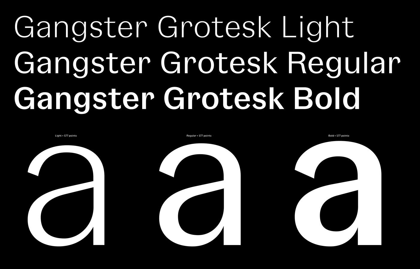 typefaces typography   typedesign design graphic design  grotesk Free font family free Free font freebie