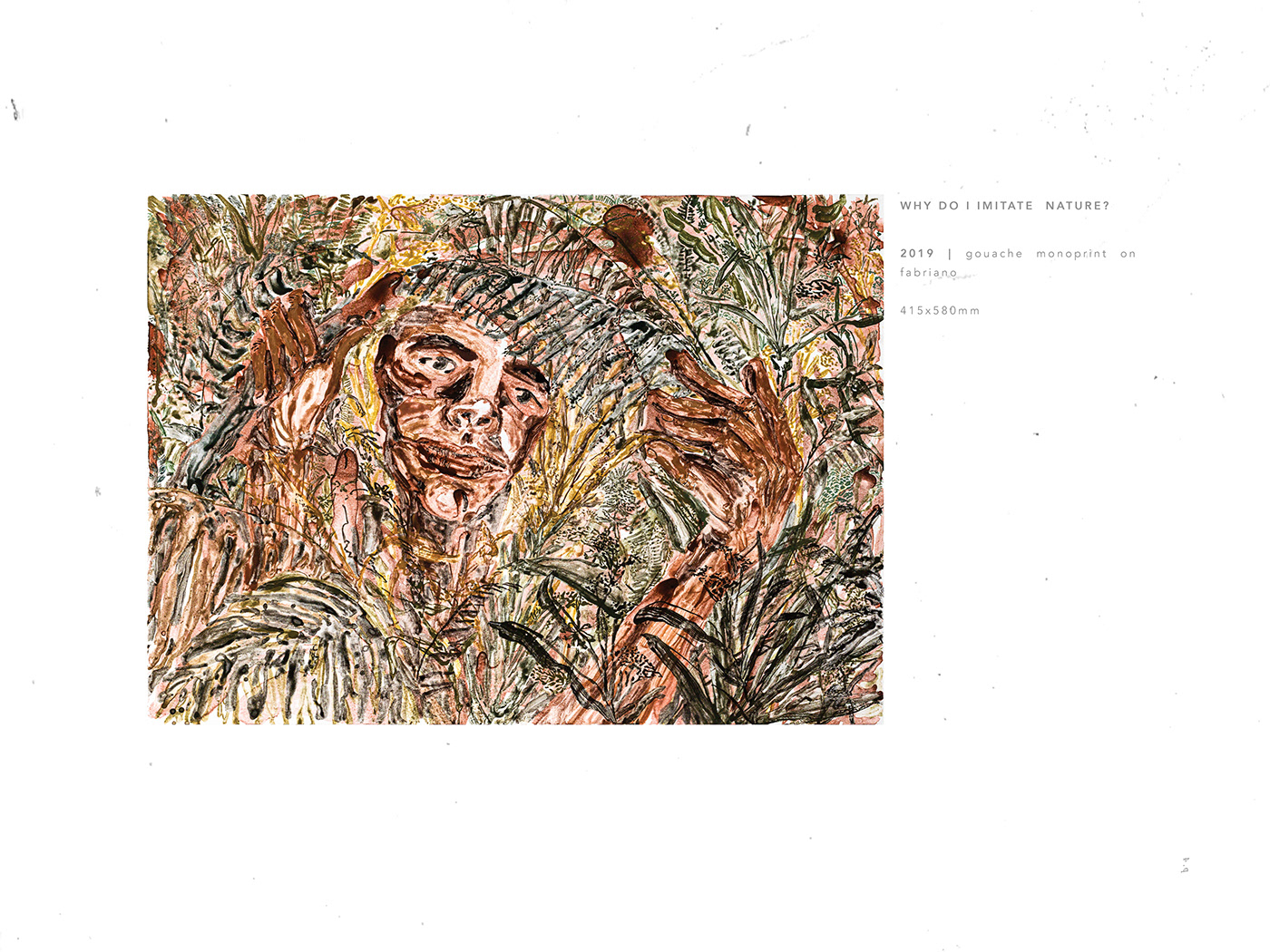 Catalogue Exhibition  fine art ILLUSTRATION  monoprint Nature plants printmaking
