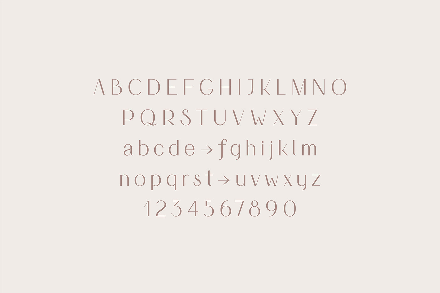 font fontduo Typeface type typography   branding  logo namecard brand Packaging