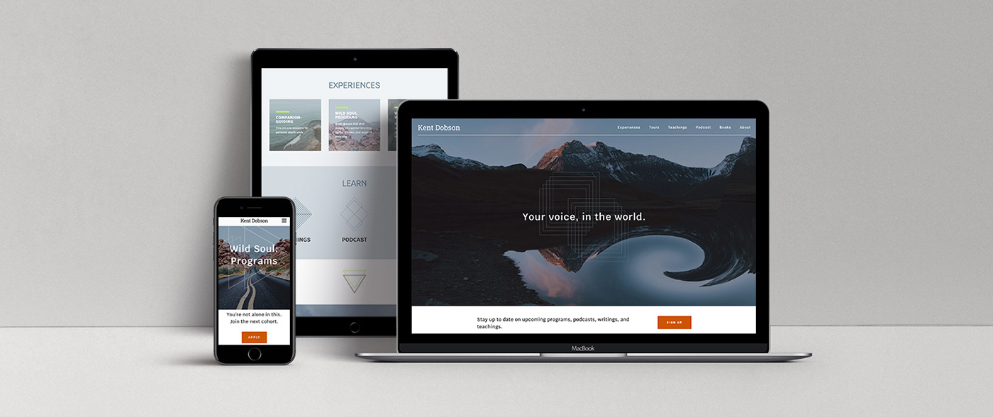 branding  iconography identity guide logo marketing   styleguide Web Design