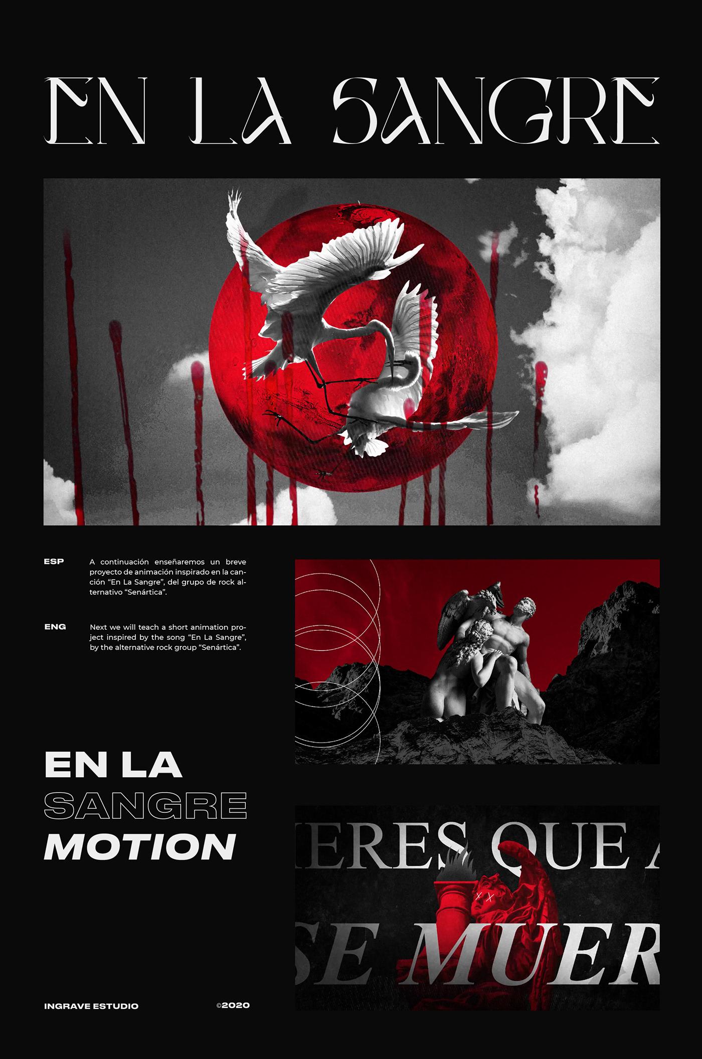 animacion animation  graphic design  motion graphics  video lyric Videoclip