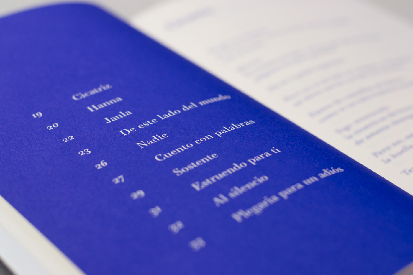 book Cali colombia Poetry  print pantone