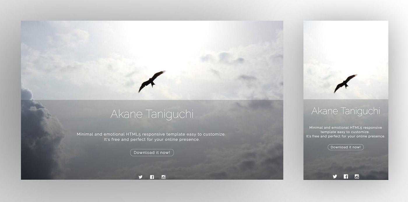 UI HTML css template free Web design