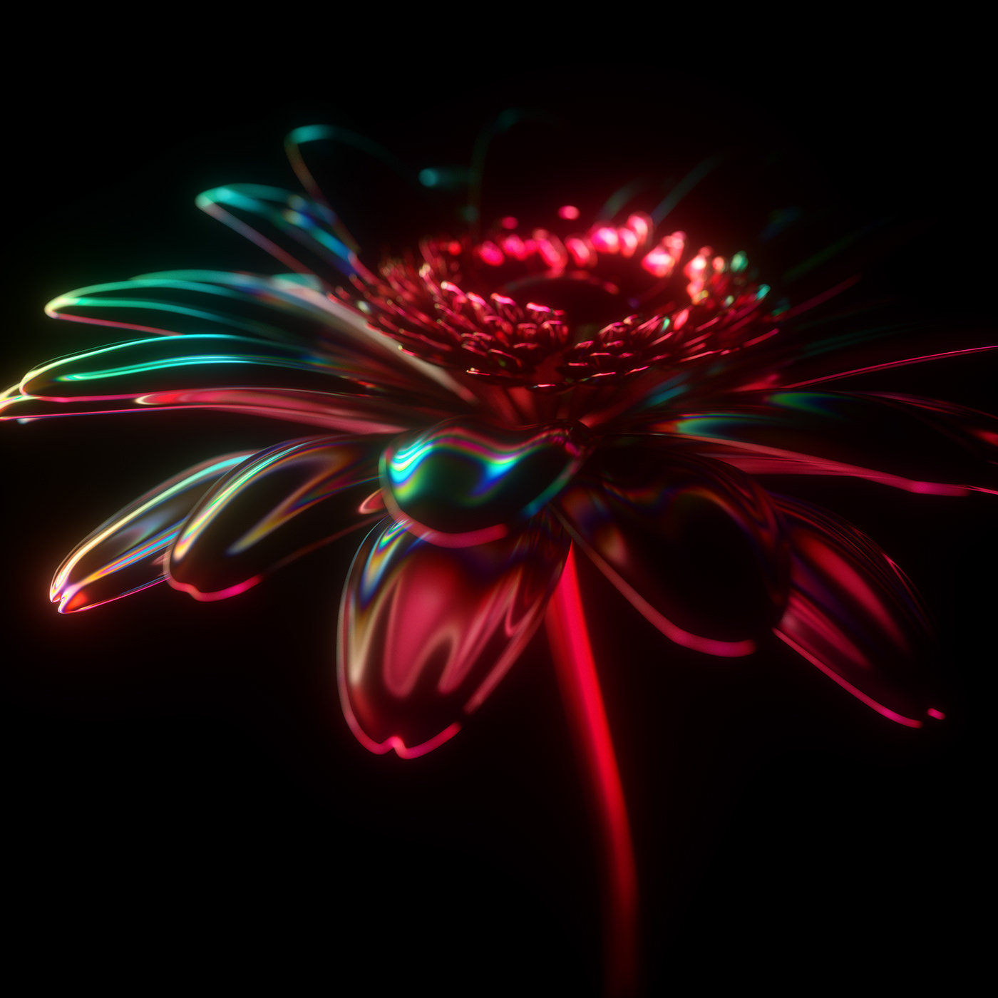Image may contain: fireworks, light and flower