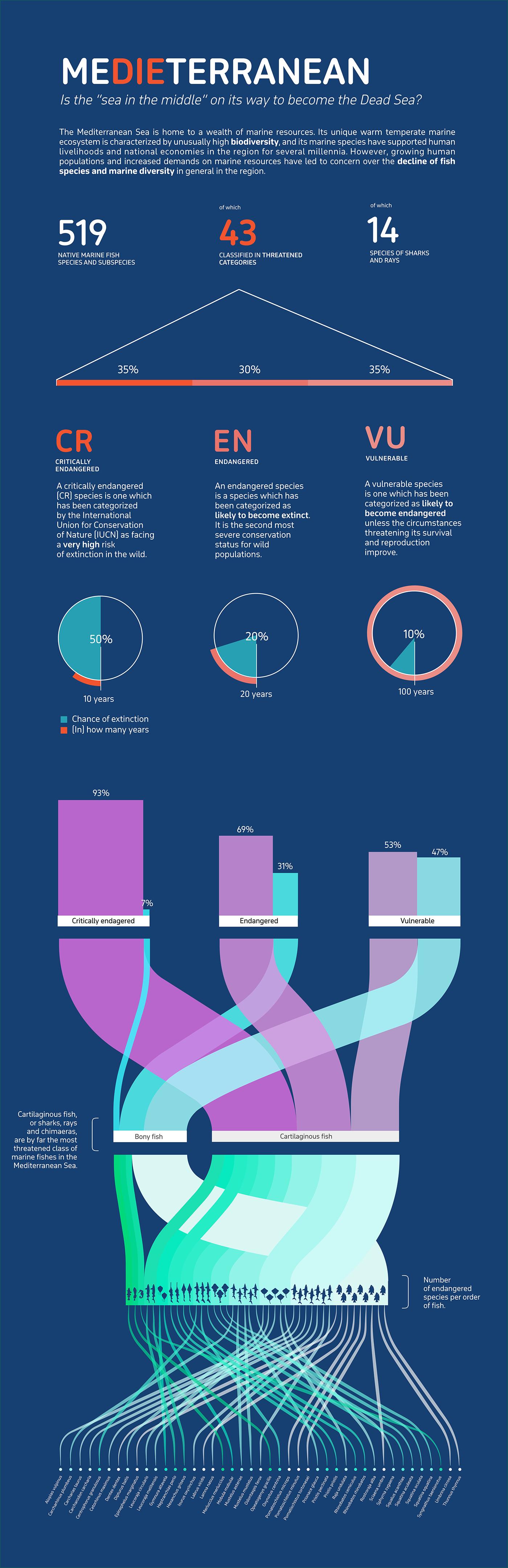 infographic information design mediterranean biodiversity